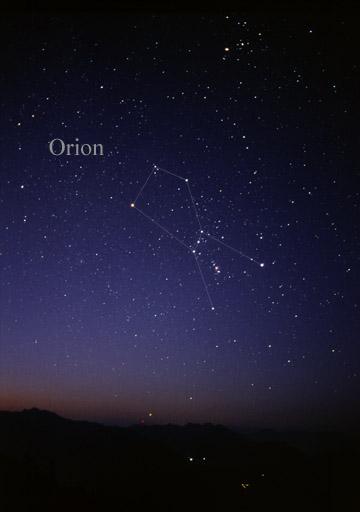Orion  Wikipedia